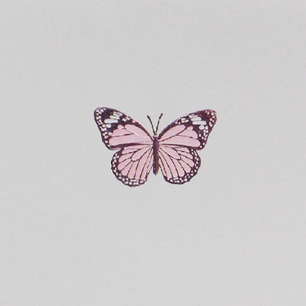 Pink Butterfly note card closeup 1000 pixels