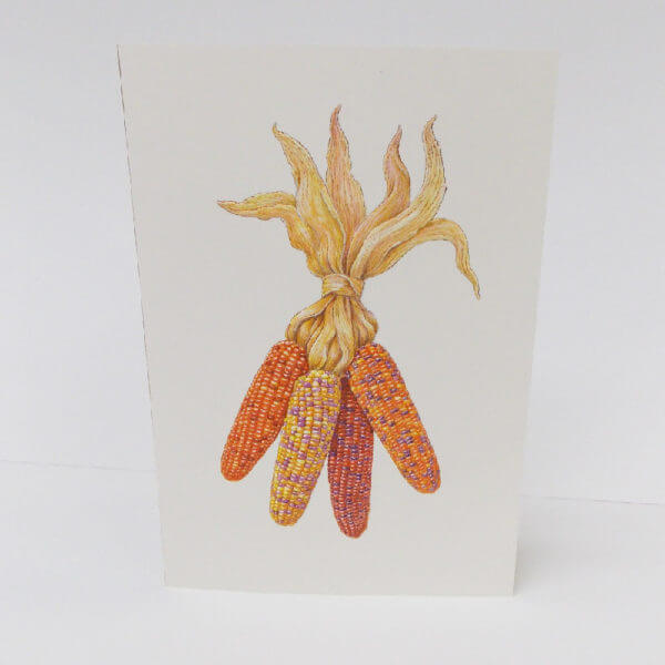 indian corn Thanksgiving card 1000 pixels