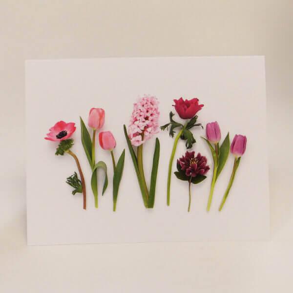 Spring Garden Flowers 1000 pixels