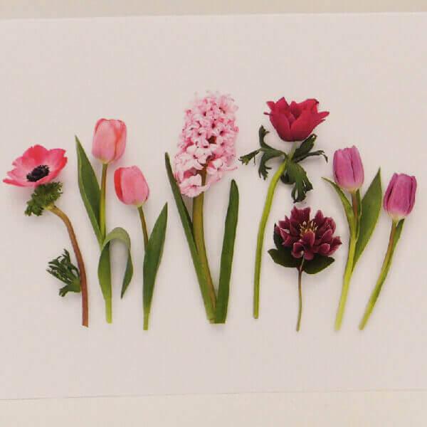 Spring Garden Flowers closeup 1000 pixels