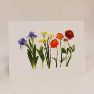 Bottle Branch® note cards – Springtime Garden Rainbow