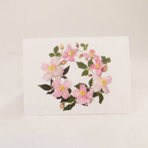 Bottle Branch® botanical note cards – Pink Clematis