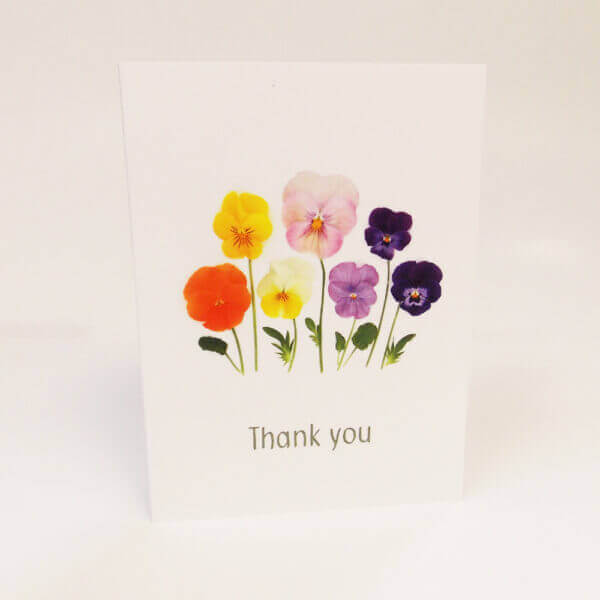 Bottle Branch® Pansies 'Thank you' card with an assortment of pansies and blank inside