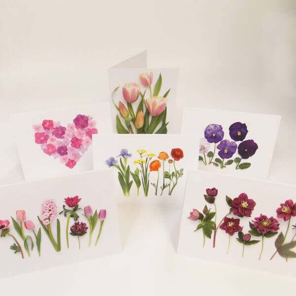 six Bottle Branch® botanical cards