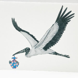 Central & Gus© Llewellyn the Wood Stork Notecard