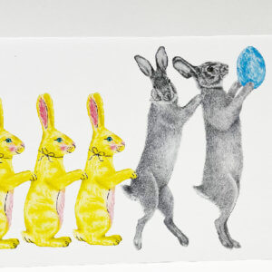 Central & Gus© Bailey & Sapphin Wicklow Cottontail Rabbit Notecard